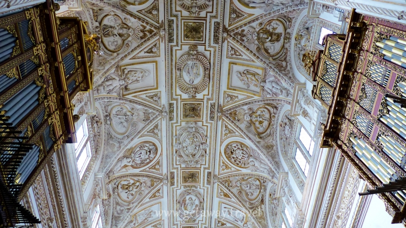 ceiling in the cathedral between the organ pipes